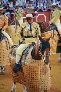 De her heste kunne stå roligt og stille mens tyren smadrede ind i dem. Utroligt.